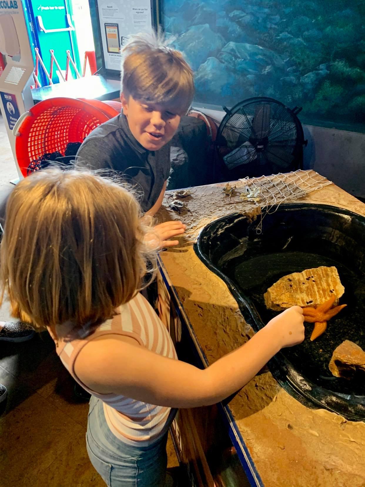 Great yarmouth aquarium, a suffolk mum blog