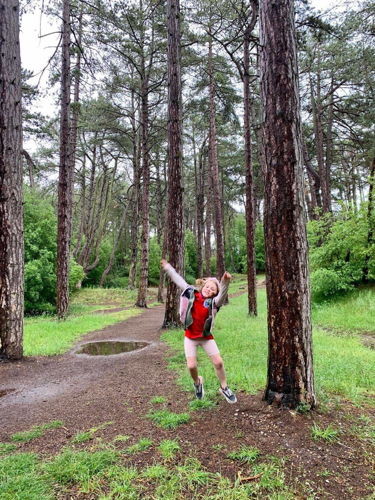wells next to the sea, pinewood forest, a suffolk mum blog holiday review